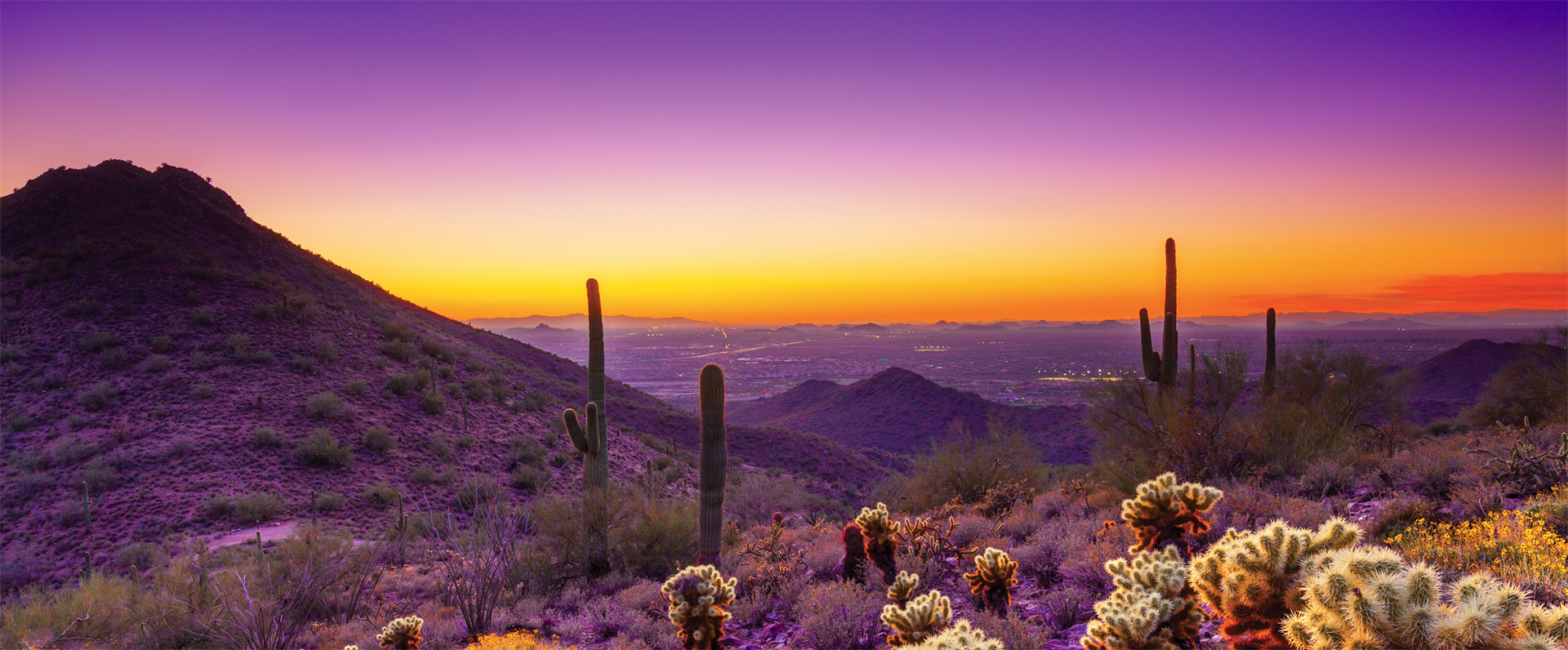 Planned Giving Round Table of Arizona - 25th AZ Planned